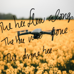 "drone in a flower field with the script ""the bee flew along, the drone bee.."""